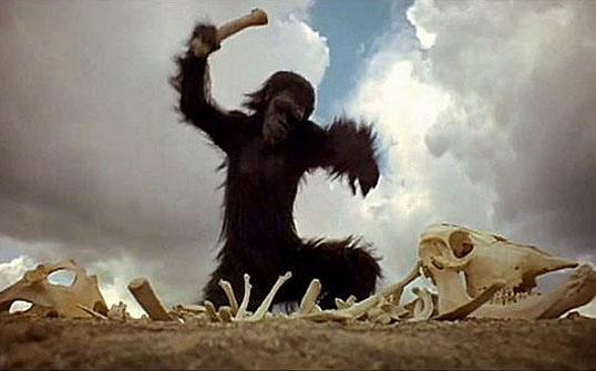 macacos-famosos01